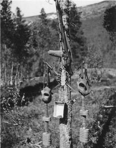 [Image: Norway+1940.jpg]